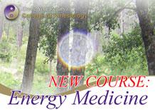 Principles of Energy Medicine